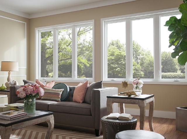 Single Hung and Casement Windows